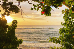 Take in the gorgeous sunset with a walk along Maria's Beach - Direct Beach Access